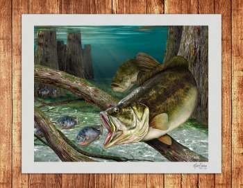 Largemouth bass fine art limited edition