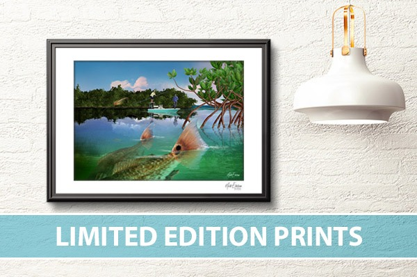 Signed and numbered limited edition fine art from marine life artist, Mark Erickson