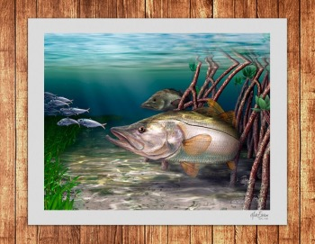Snook art limited edition print