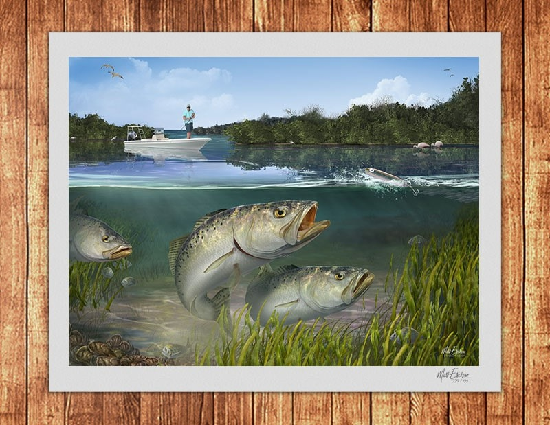 Cockroach Bay Trout limited edition signed print