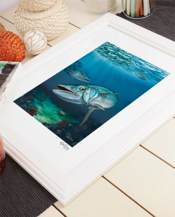 Kingfish fine art print signed and numbered limited edition