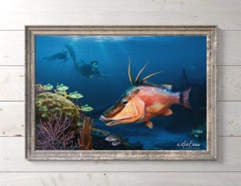 Hogfish art framed