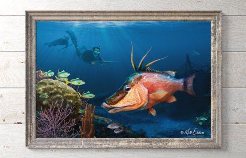 Hogfish art framed gift for spearfisherman