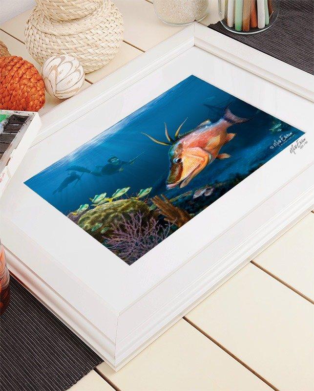 Hog snapper framed artwork