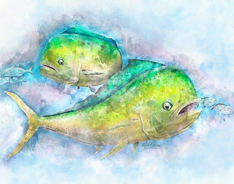 Mahi Mahi art print gift for mahi fisherman