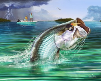 Fly fishing for tarpon