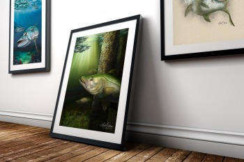 Snook framed painting gift for snook fisherman