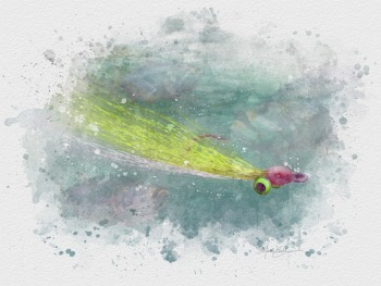 Clouser deep minnow flyfishing watercolor art