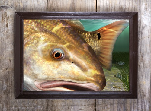 Redfish painting in a frame