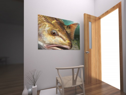 Redfish painting canvas on the wall