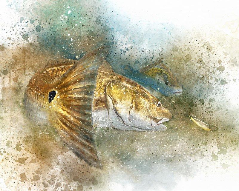 Louisiana Redfish watercolor art print