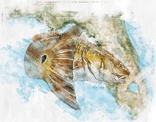 Redfish over a Florida map art print for Florida redfish fisherman gift