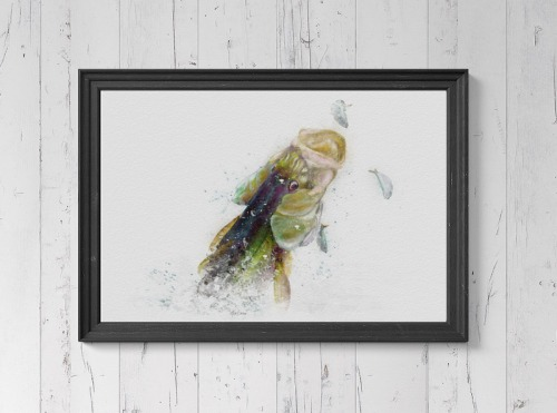 Snook watercolor art painting print for snook fisherman