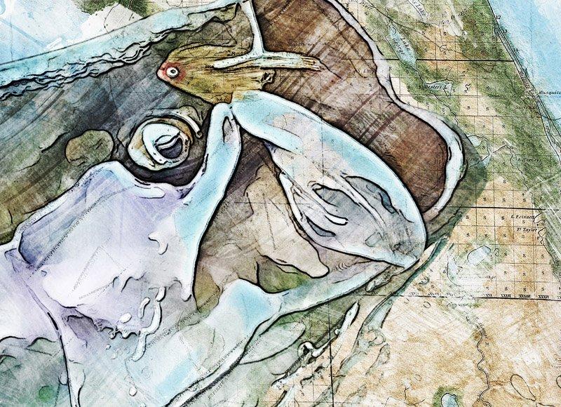 Tarpon watercolor Florida map