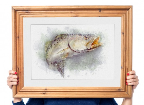 Speckled trout watercolor fishing art gift