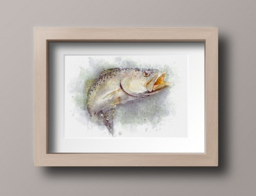 Seatrout art in frame