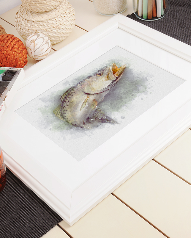 Speckled trout watercolor art