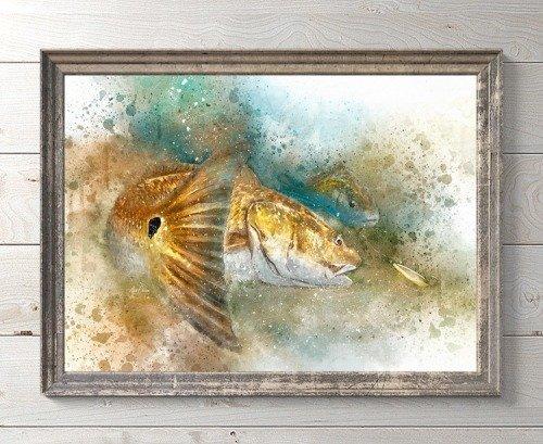 Framed Louisiana redfish watercolor print