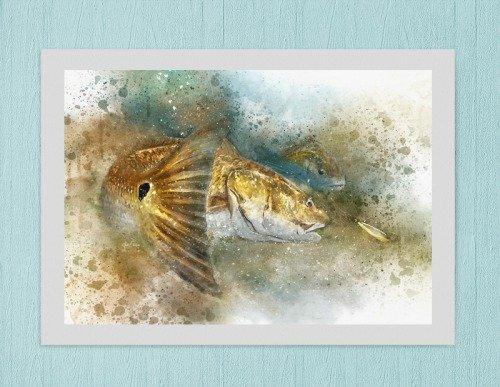 Louisiana Redfish art print on mat