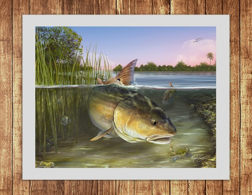 Redfish matted art print for redfish fisherman